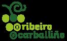 Xeodestino Ribeiro Carballiño